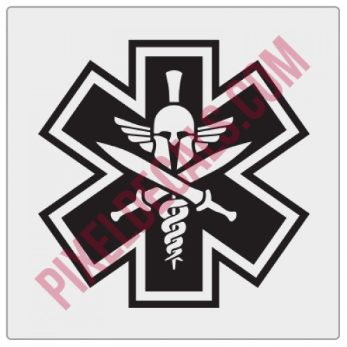 EMS Spartan Decal